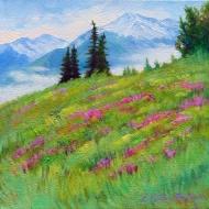 3.  Yukon Spring 10x10 $340