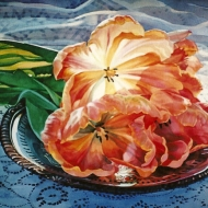 Tulips and a Tin Plate